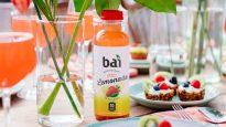 Bai Strawberry Lemonade and Granola Yogurt Tart